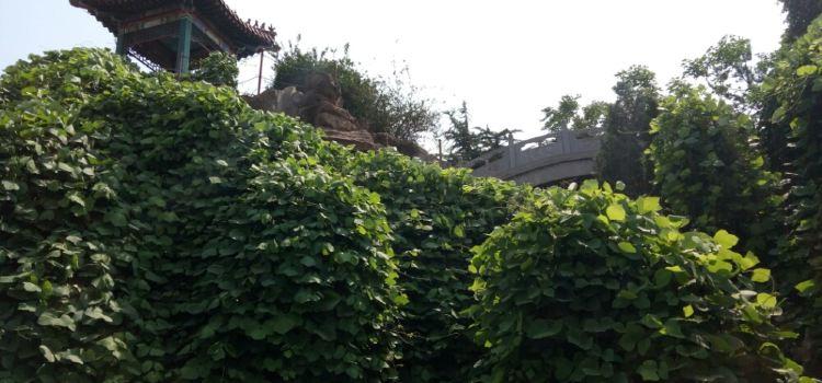 東山文化博藝園2