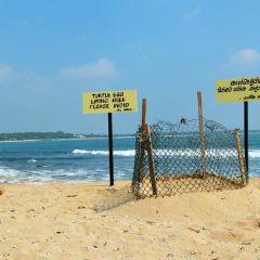 坦加勒海灘用戶圖片
