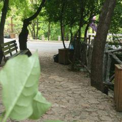 Sankuaishi National Forest Park Ticket Office User Photo