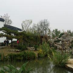 武漢園博園用戶圖片