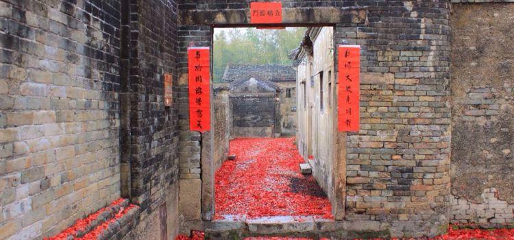 Sujiawei1