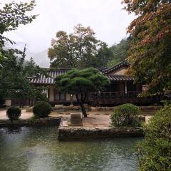 삼일공원 위 전망대 여행 사진