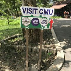 Chiang Mai University User Photo