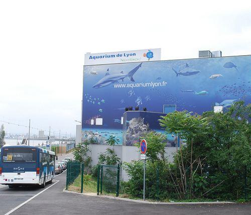 裡昂水族館