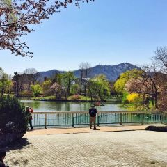 Nakajima Park User Photo
