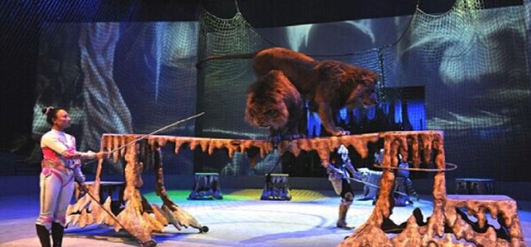 Happy Circus Theater3