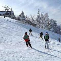 映山紅滑雪場用戶圖片