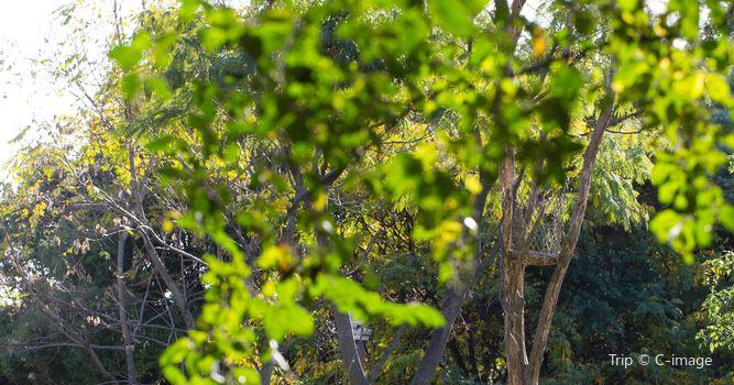 덴노지 동물원2