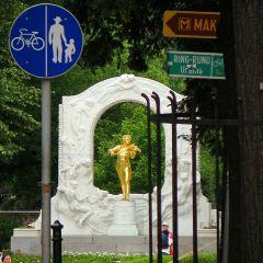 Johann Strau? monument User Photo