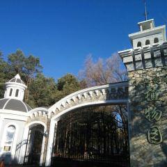 Xiaoxing'anling Botanical Garden User Photo