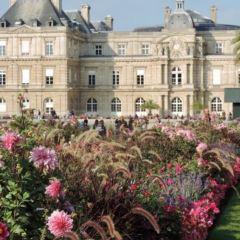 Luxembourg Gardens User Photo