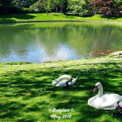 安特衛普城市公園用戶圖片