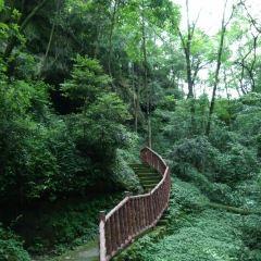 Jinchengshan-mo'ertan Sceneic Area User Photo
