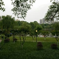 金雁湖用戶圖片