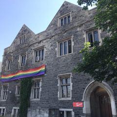 多倫多大學哈特之家用戶圖片
