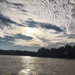 Kawa Mangrove User Photo