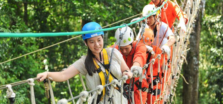 Sky Line Adventure Jungle Leap3