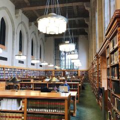 Sterling Memorial Library User Photo