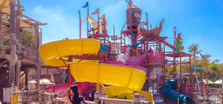 Wild Wadi Waterpark1