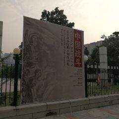 Henan Museum User Photo