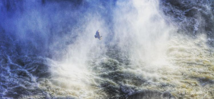 Iguassu Waterfalls1
