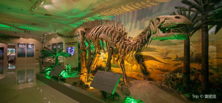 甘肅地質博物館2