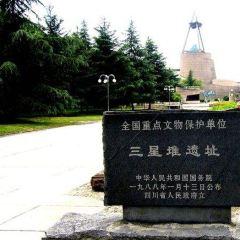 三星堆考古遺址公園用戶圖片