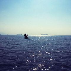 Elephanta Beach用戶圖片