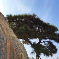 Linlihu Ecological Garden User Photo