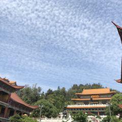中普陀寺用戶圖片
