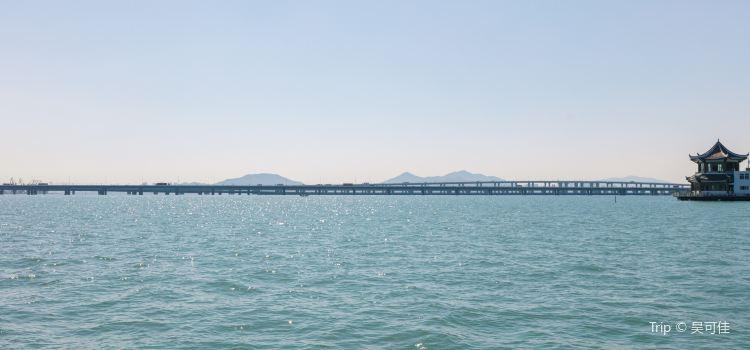 Xiamen Bridge1