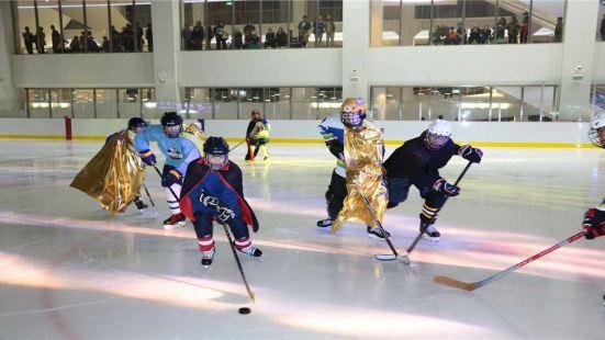 陳露國際冰上中心