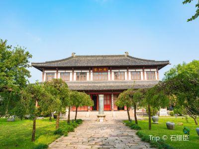 Tang City Site