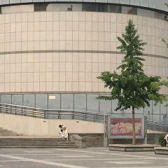 鄭州美術館用戶圖片