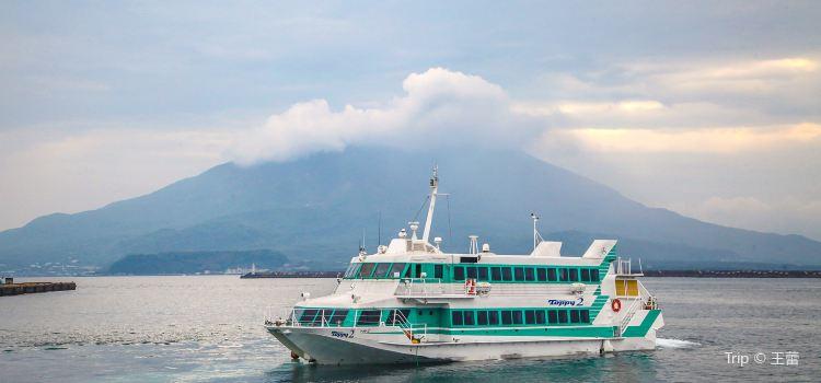 사쿠라지마 섬1