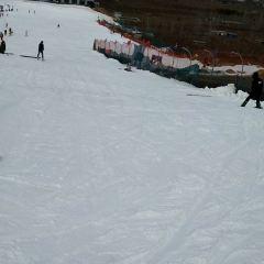 차산 스키장 여행 사진