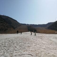 桃花峪生態滑雪場用戶圖片