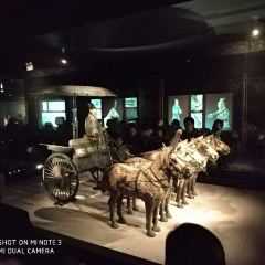 Bronze Chariot and Horse of Qinling User Photo