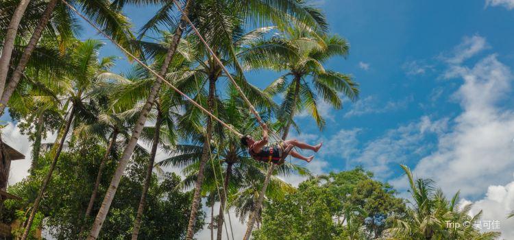 Bali Swing2