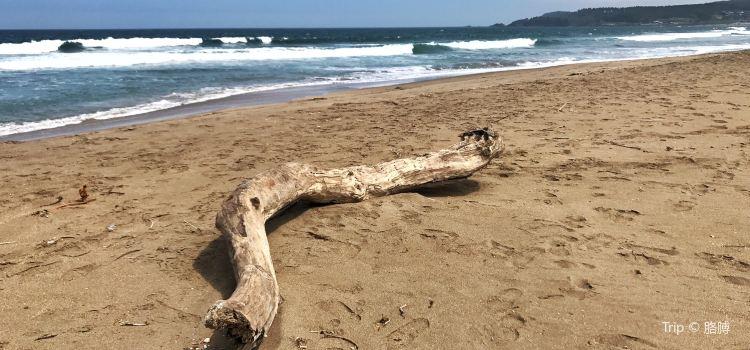 Tanesashi Coast2