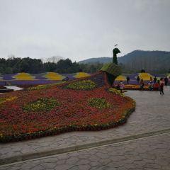 Jardin Admirable Tourist Resort User Photo