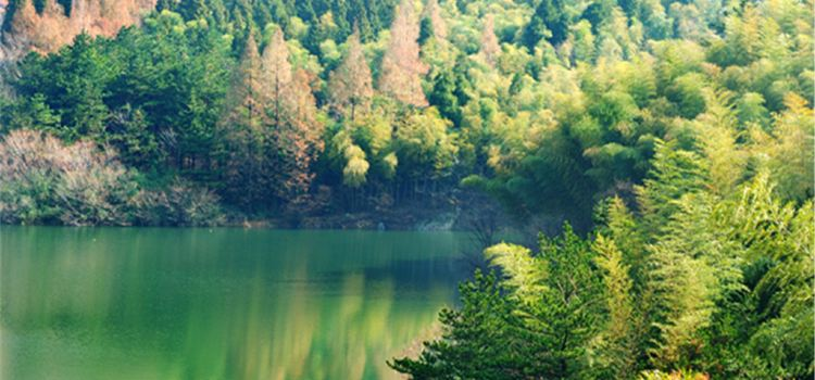 Huangbaishan National Forest Park