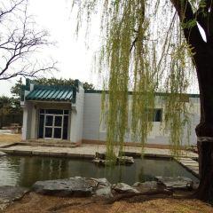 Bonsai Garden User Photo