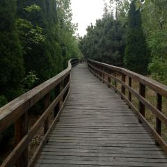 Longmen Gully Scenic Area User Photo