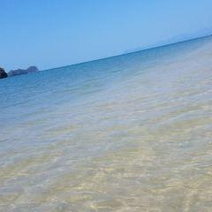 愛情海灘用戶圖片
