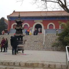 Dongguang Iron Buddha Temple User Photo