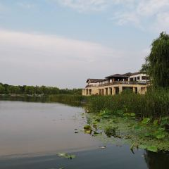 Yangcheng Lake Peninsula Tourist Resort User Photo