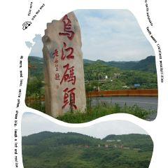 Wujiangdu Scenic Area User Photo