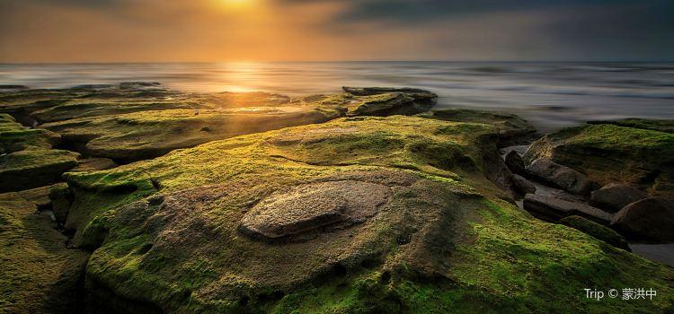오채 해변2