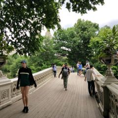 Bow Bridge User Photo